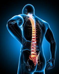 back-pain1