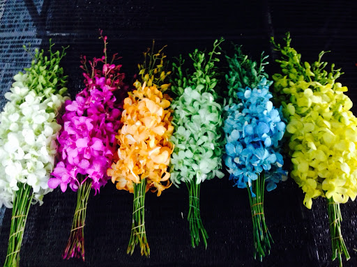 Thailand Orchid Exporter